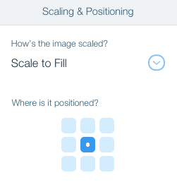 Changing the Image Scaling and Position on a Strip | Help Center